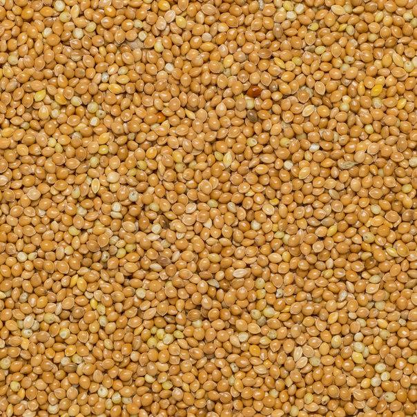 Millet glutinous Huangmi org. 25 kg FT IBD