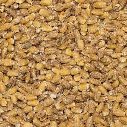 Barley pearled org. 25 kg