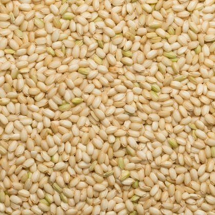 Rice brown short glutinous org. 22,68 kg*