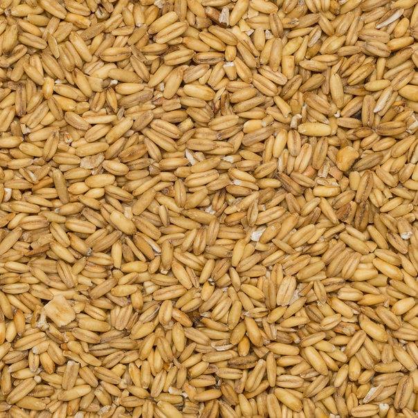 Oats hulled org. 5 kg