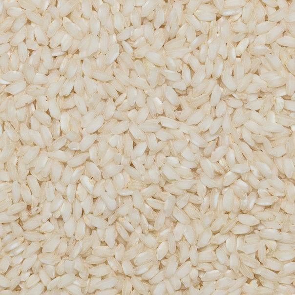 Rice Carnaroli org. 25 kg