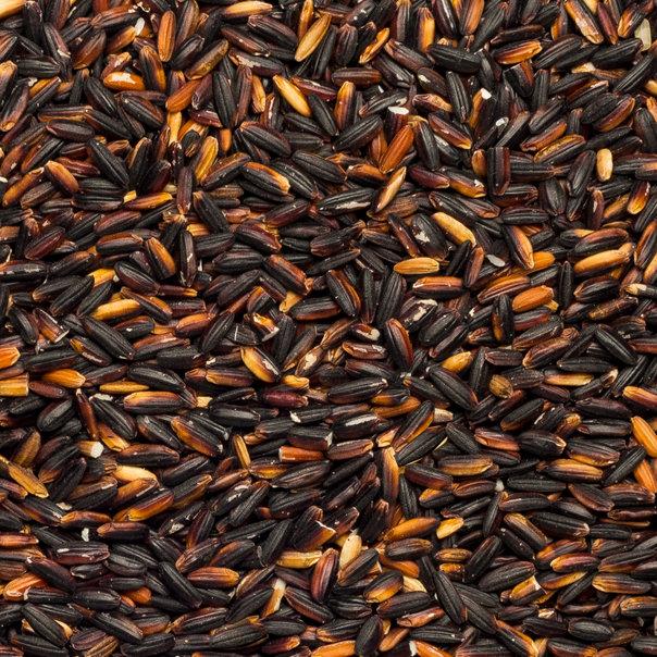 Rice black glutinous org. 25 kg