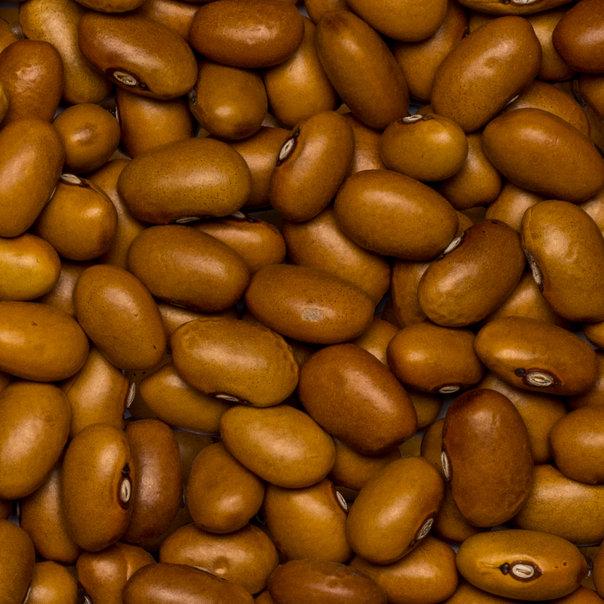 Beans brown org. 25 kg
