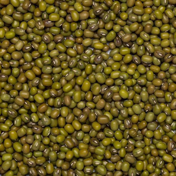Mungbeans org. 25 kg