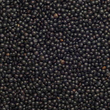 Lentils Beluga black org. 25 kg*