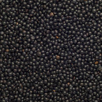 Lentils Beluga black org. 5 kg*