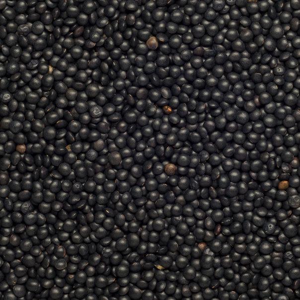 Lentils Beluga black org. 25 kg