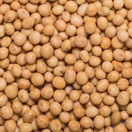Soya beans org. 25 kg FT IBD