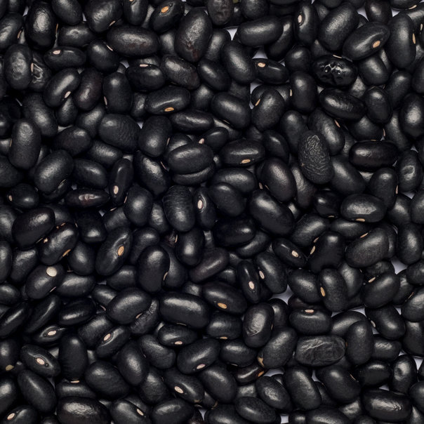 Beans black org. 5 kg FT IBD