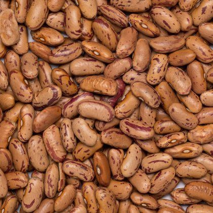 Beans borlotti-pinto org. 5 kg*