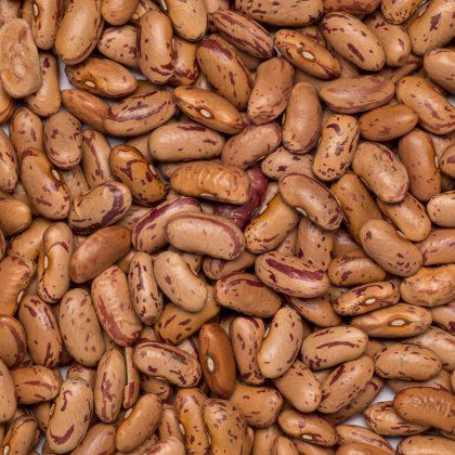 Beans borlotti-pinto org. 25 kg*