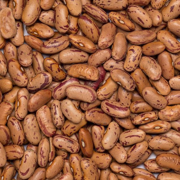 Beans borlotti-pinto org. 25 kg