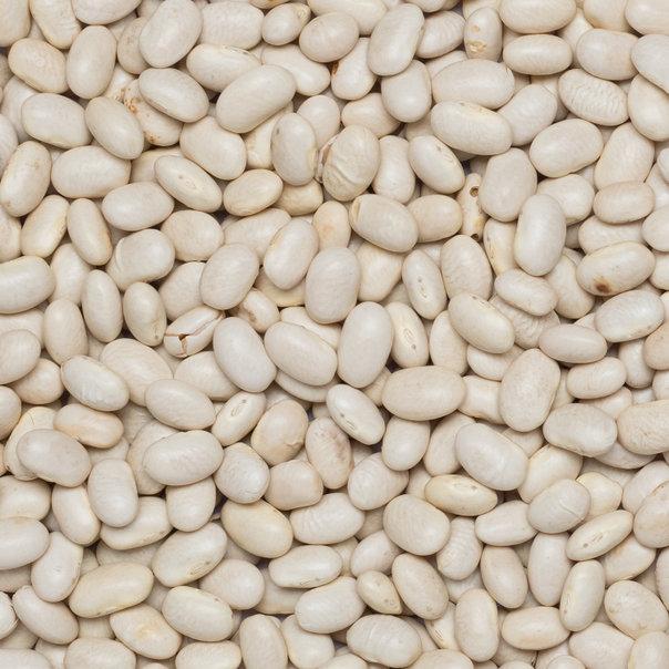 Beans white small org. 25 kg FT IBD