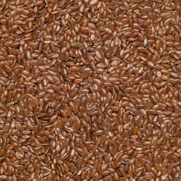 Flax seed brown org. 25 kg
