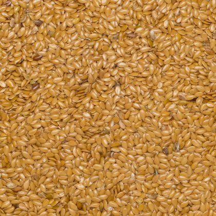 Flax seed blond org. 25 kg