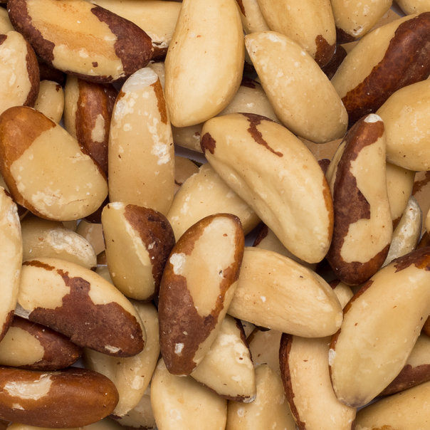 Brazil nuts medium org. 20 kg*