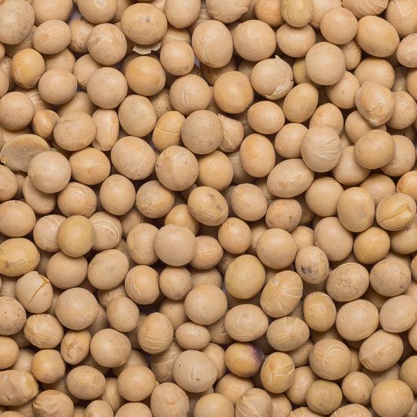 Soya beans org. 25 kg