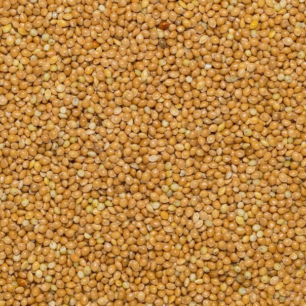 Millet Org Mizi type 25kg